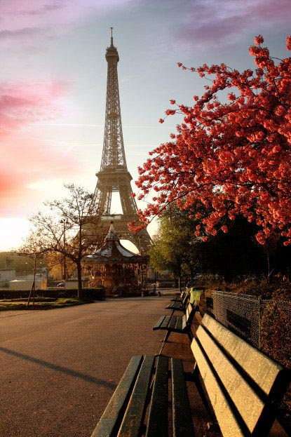 Фотошпалери Париж - 03_0116