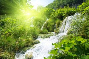водопад, лес, свет 13_0072