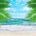 море пальмы 11_0034