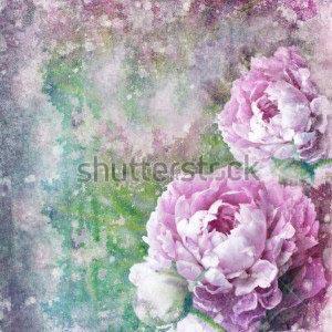 Цветы фон -143800648