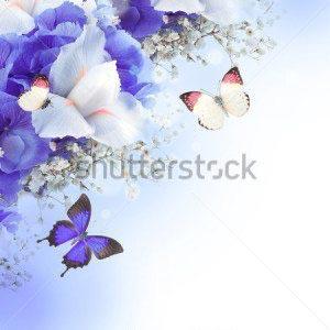 Цветы и бабочки -128476067