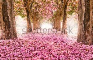 Весенние цветы -128179493