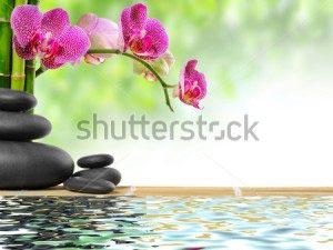 Цветы спа -81623674