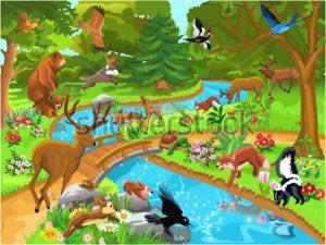 Сказочный лес-112511984