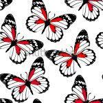 Бабочки -43273336