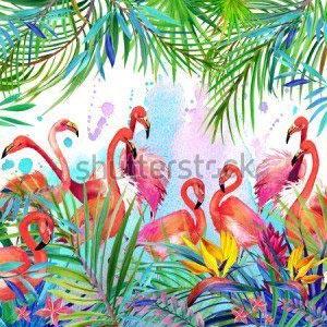 Фламинго -276518387
