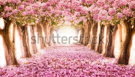 Фотошпалери Тунель 149727242