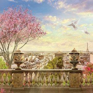 Вид на Париж -265064