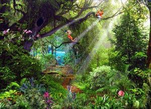 Красивый лес -343045052