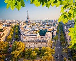 Париж -395501