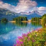 Озеро -50398035
