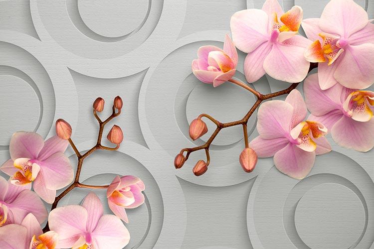 Фотообои 3д орхидеи 182547947-1
