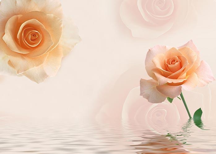 Фотошпалери 3д троянди 370412576