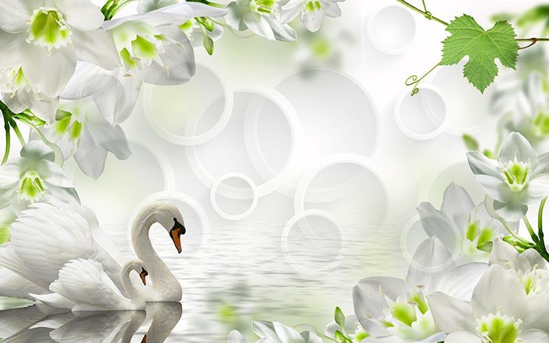 Фотообои 3д Лебеди 785422463
