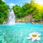 Фотообои Водопад 46132399, природа