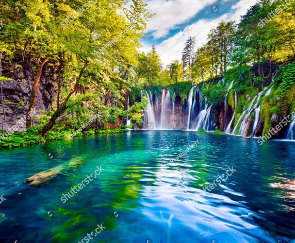Фотообои Природа 717874486