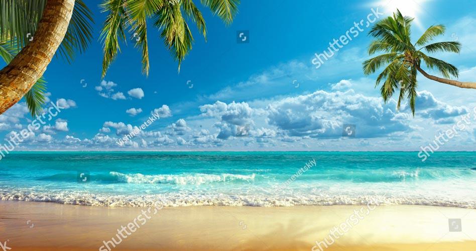 Фотошпалери Пляж 670175374