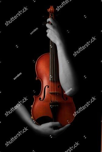 Фотообои Скрипка 754684657