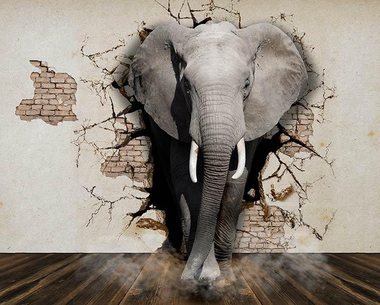 Фотообои 3д слон 767778130
