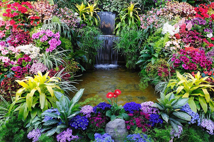 Фотообои Цветы 44435608