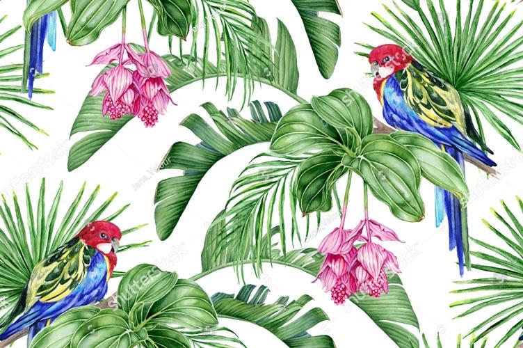 Фотообои Листья пальмы 702180901