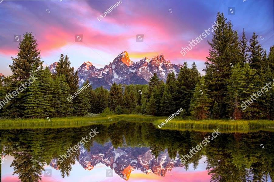 Фотообои Природа 516515215
