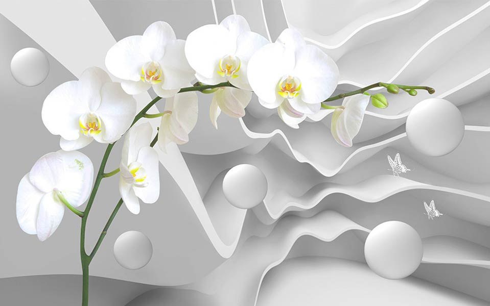 Фотообои Орхидея 792245734