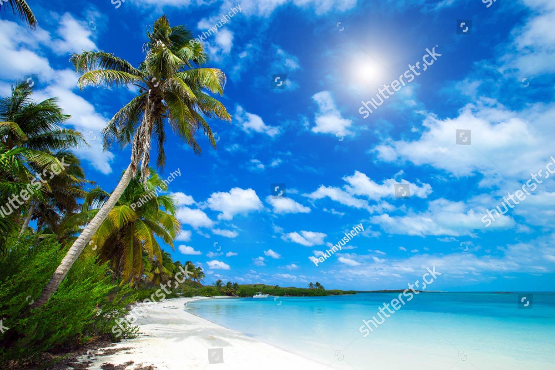 Фотообои Пляж 287518829