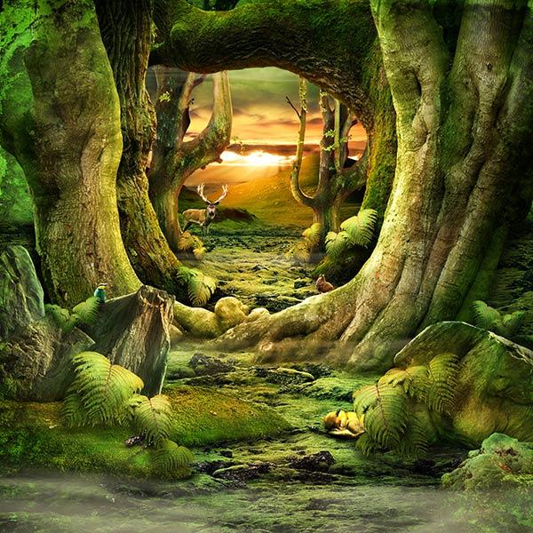 Фотообои 3д лес 27406623