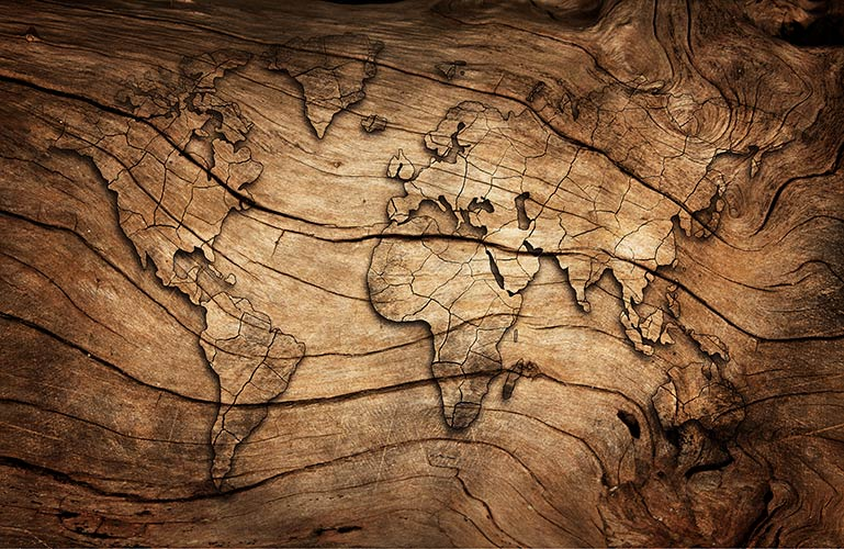 фотошпалери Карта з дерева 15026642