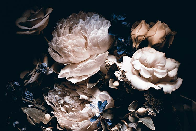 Фотошпалери квіти 730189108