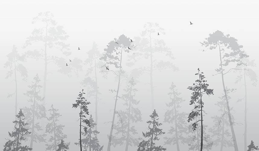 фотообои лес туман 12227770192