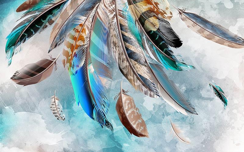 красивые дизайнерские перья настенные фотообои