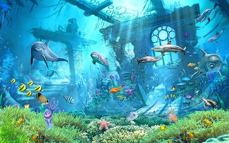 фотошпалери підводний світ  дельфін